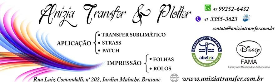 Banner - Anízia Transfer