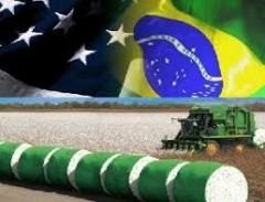 Brasil retoma o embate do algodão